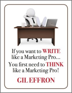 write like a pro cover3